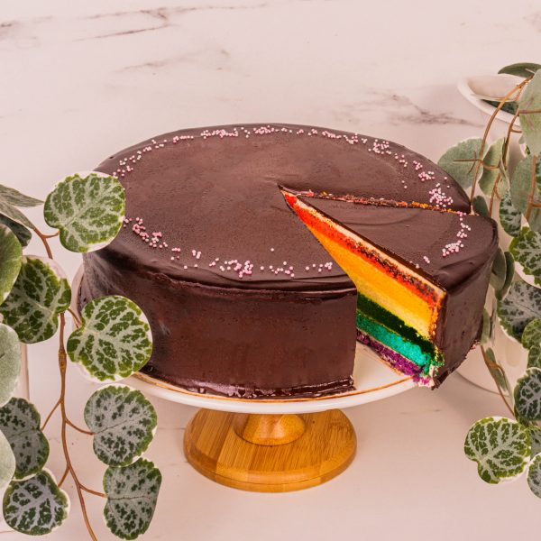 chocolate rainbow cake sliced by mori cakes